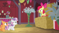 Apple Bloom sitting on a bale of hay S8E10