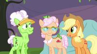 Applejack turns down Applesauce's invitation S3E8