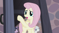 "Fluttershy ""they were right over there!"" S5E2"