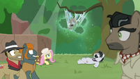 Fluttershy slowly approaches the hive S9E21