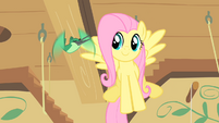 Hummingway sings to Fluttershy S1E22