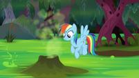 Rainbow flies up to a geyser vent S8E17