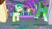 Sandbar and Yona doing the pony prance S9E7