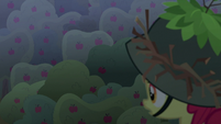 Apple Bloom sees apples fall out of trees S9E10