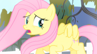 Fluttershy '...side to this' S4E07