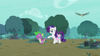 """Rarity """"your stone scales look worse!"""" S8E11"""