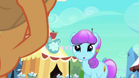 Sapphire Joy confused by Applejack S3E02