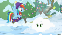 Applejack covered with snow BGES1