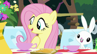 Fluttershy and Angel at the tea party table S8E18