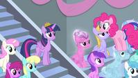 Pinkie Pie standing on Crystal Pony's head S4E24