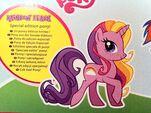 Rainbow Flash Official Backcard