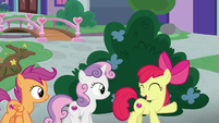 "Apple Bloom ""friendship with your best friends"" S8E12"