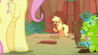 Applejack gets annoyed at Fluttershy S8E23