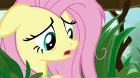 "Fluttershy ""not fluffy enough?"" S9E18"