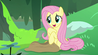 """Fluttershy """"you're rubbing off on me, Zecora!"""" S7E20"""