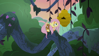 Fluttershy slides up to the flash beehive S7E20
