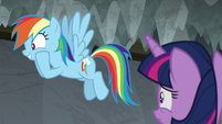"""Rainbow """"found out Celestia was in it!"""" S8E7"""
