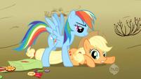 Rainbow Dash caught Applejack 1 S2E14