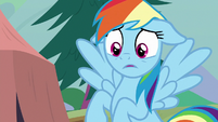 Rainbow shocked by Scootaloo's outburst S8E20