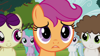 """Scootaloo """"you're not mad"""" S4E15"""