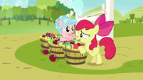 "Apple Bloom ""special somepony's waitin' for 'em"" S8E12"