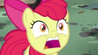 """Apple Bloom surprised """"twittermites!"""" S5E4"""