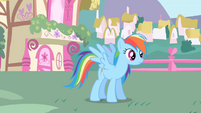 Rainbow Dash after meeting Twilight S1E01
