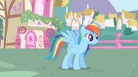 Rainbow Dash after meeting Twilight S1E01