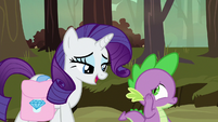 """Rarity """"you could pay Zecora a visit"""" S8E11"""