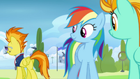 Spitfire 'for a couple of newbies' S3E07