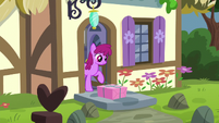 Berryshine looks at the delivered package S5E19