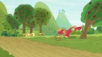Big Mac kicking an apple tree hard S9E10
