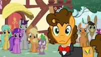 Cheese and ponies staring at Pinkie S4E12