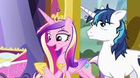 "Princess Cadance ""she'll calm right down"" S7E3"