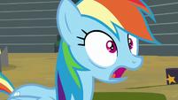 """Rainbow Dash """"no way!"""" S8E20"""