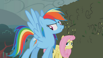"Rainbow Dash ""these babies"" S02E01"