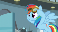 Rainbow Dash listening to Twilight S6E7