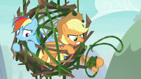 Applejack swinging her vine lasso S8E9