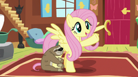 "Fluttershy ""animals are my field of expertise"" S7E5"