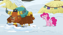 Prince Rutherford -snow bed got a little melty- S7E11