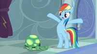 """Rainbow """"But get up anyway!"""" S5E5"""