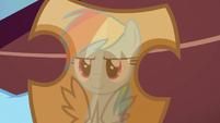 Rainbow Dash's reflection in Netitus S7E26