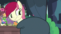 Rose trying to look at Rarity's mane S7E19