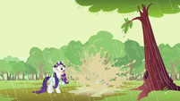 Sweetie Belle landing to puddle S2E05