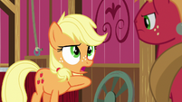 "Applejack ""I'm the one with the ideas"" S6E23"