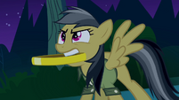 Daring Do with ring in her mouth S4E04