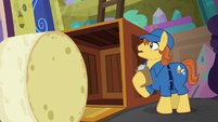 Giant wheel of cheese rolls out of crate S8E15