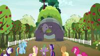 Mr. Tortoise-Snap appears eating trees S9E13