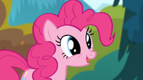Pinkie Pie 'Now look at you!' S4E09
