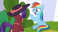 """Rainbow Dash """"how is this perfect?!"""" S9E4"""